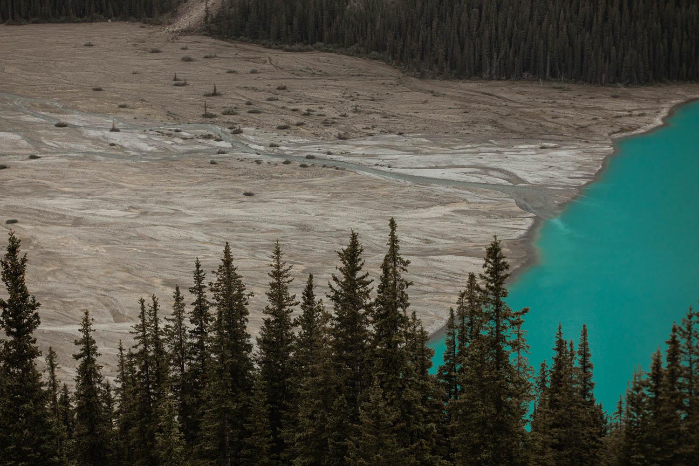 Banff Mountain View Braided River