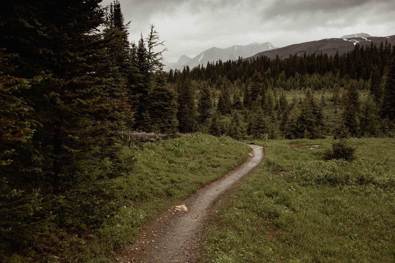 Mt Assiniboine Trail