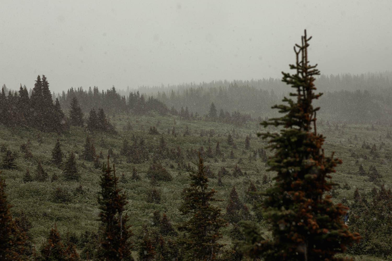 Snowing in Mt Assiniboine Provincial Park