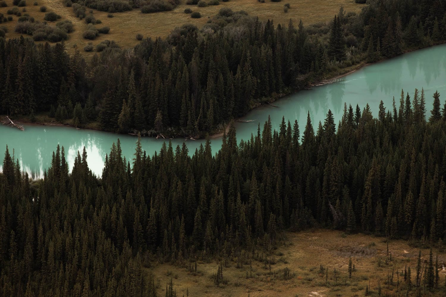 Bow River from above
