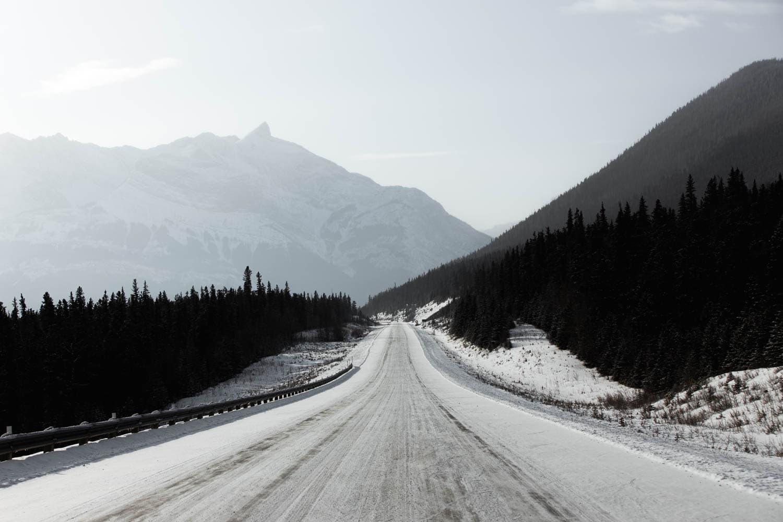 driving towards Abraham Lake